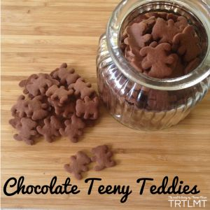 Chocolate Teeny Teddies | The Road to Loving My Thermo Mixer