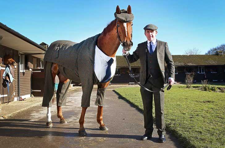 Este caballo con un traje de 3 piezas es lo más distinguido que verás jamás