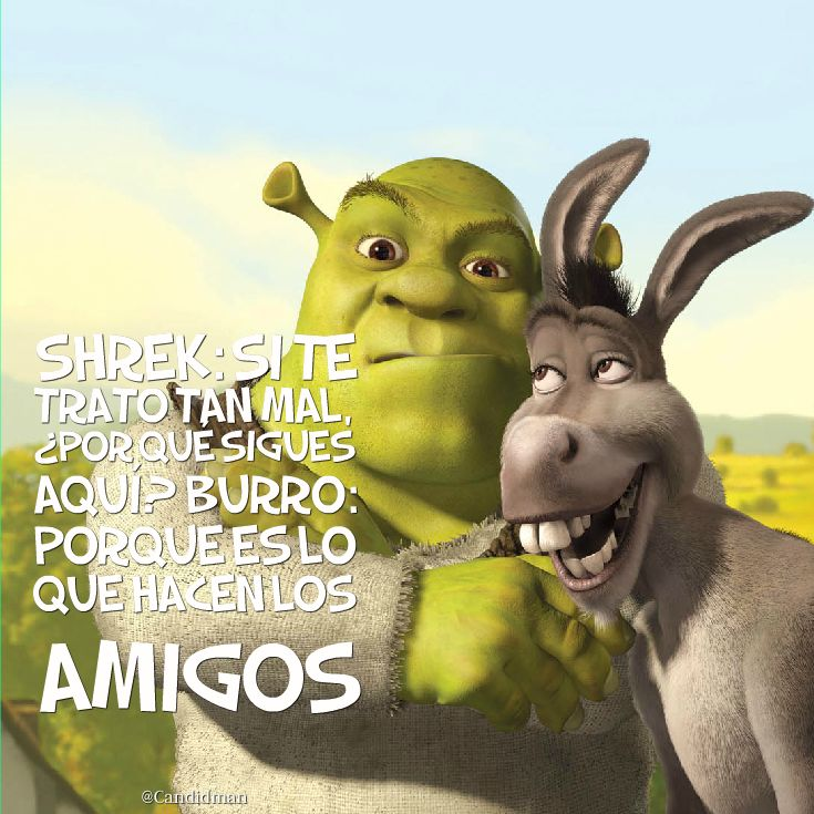 Best Shrek Quotes: 177 Best Images About Humor On Pinterest