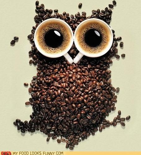 """Never thought much of owls....but made with coffee beans & 2 cups of """"Joe""""=LIKE"""