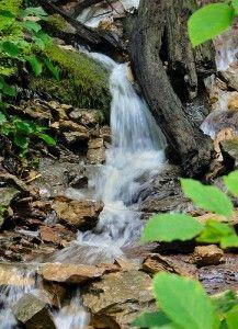 Flessenwater, leiding water of toch maar filteren? Alles over gezond water.