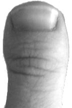 Clubbed thumb - How I lost my Sanity 4 http://blog.markseltman.com/2015/09/28/how-i-lost-my-sanity-4/