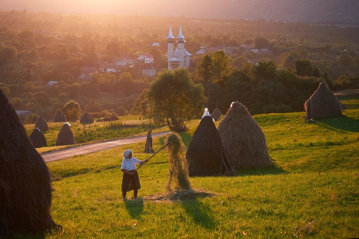 Elderly-woman-stacking-hay-Maramures-Romania