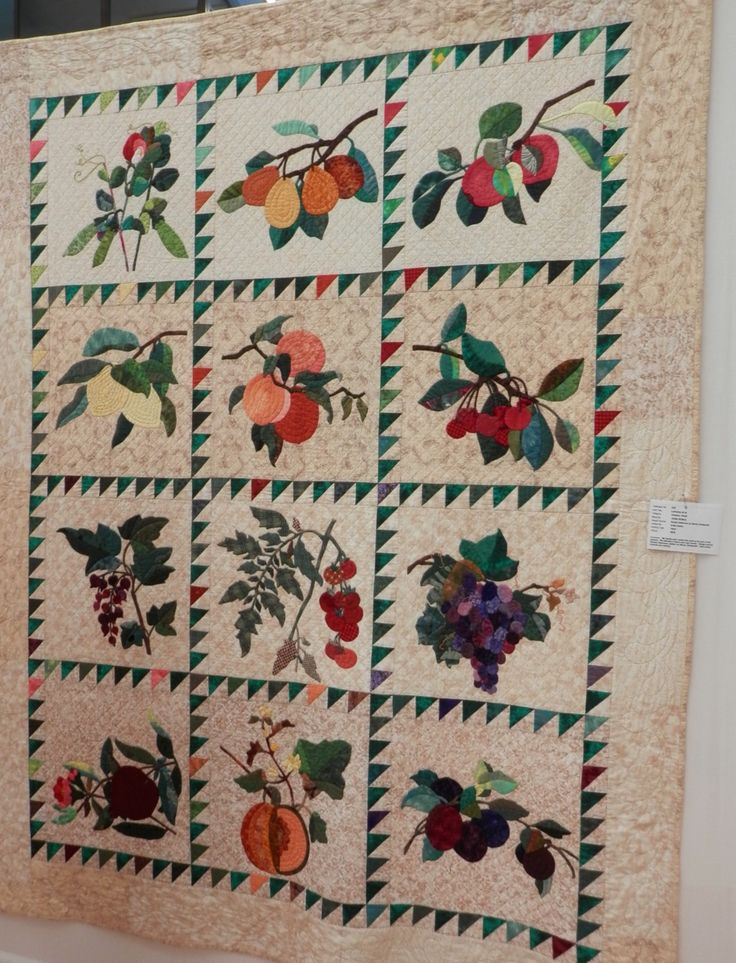 This quilt was called 'Lemons et al' and was a Becky Goldsmith pattern made by Anita Arbery.  Anita made a lovely job with this quilt and her fabric choices, and her hand quilted feather border was a nice touch.