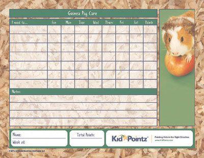 Guinea Pig Care for Children