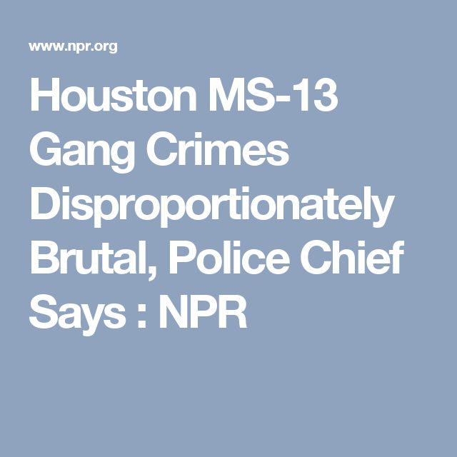 Houston MS-13 Gang Crimes Disproportionately Brutal, Police Chief Says : NPR