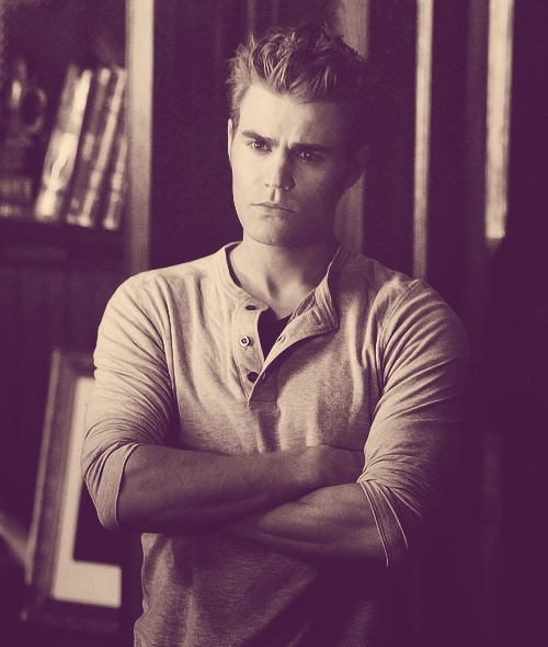 Stefan's diaries bloodlust