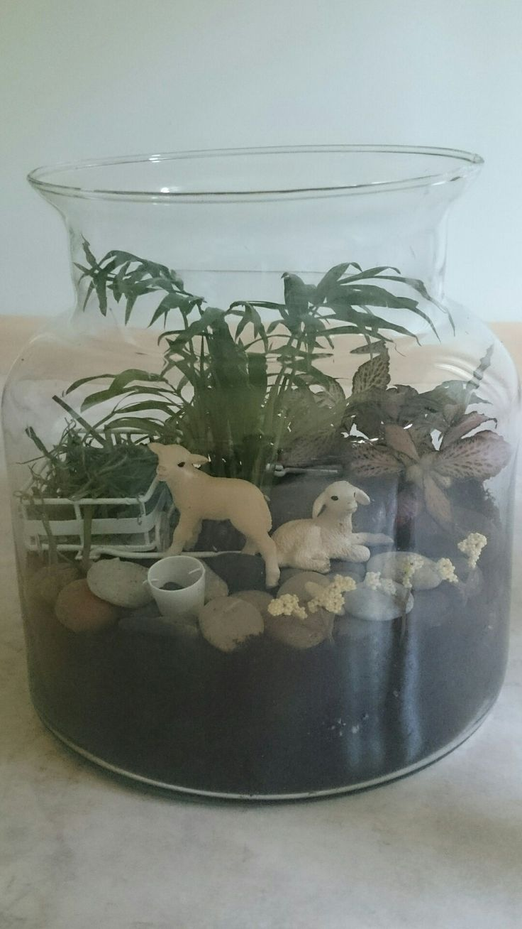 My terrarium with lambs, from the front ©Tuuli