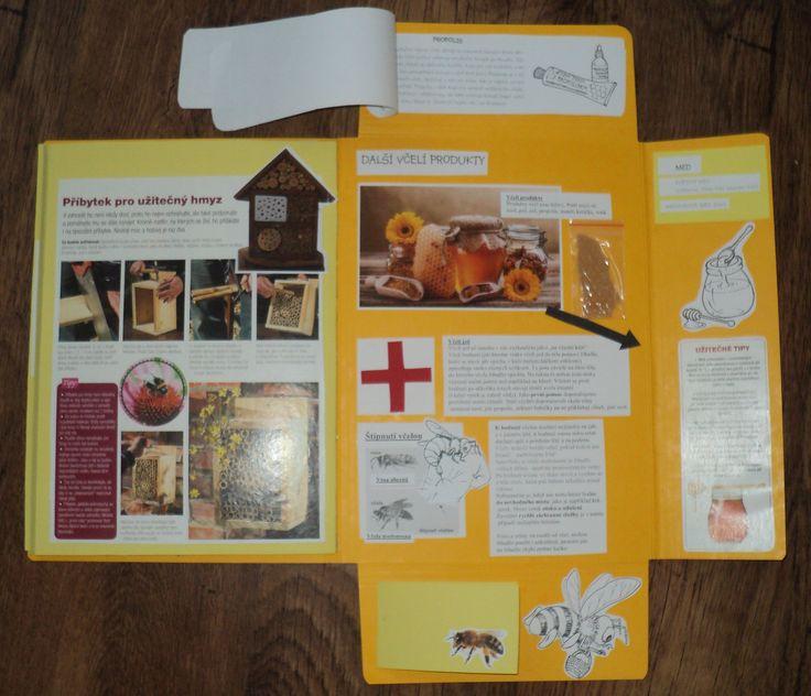 Včely - lapbook 3. část