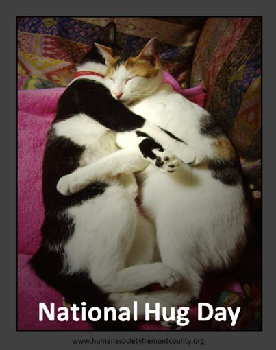 Have you hugged a furry friend today?