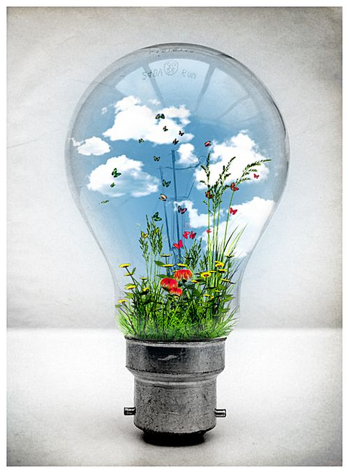 197 Best Images About Light Bulb Art On Pinterest Led
