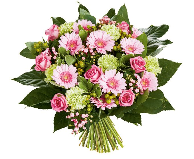 Bloemen van DEEN worden gratis thuis bezorgd, komen dagelijks vers van de veiling en worden met de hand gebonden door professionele bloemisten. Zeker 1 week vaasgarantie! Dit boeket bevat: •Hypericum groen •Germini roze •Anjer groen •Roos roze •Bouvardia •Pittosporum •Robusta •Aralia