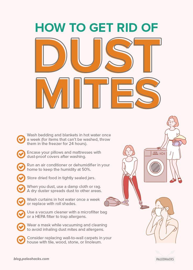 9 Surprising Places Dust Mites Are Creeping In Your Home Dust Mite Allergy Dust Mites Dust Allergy