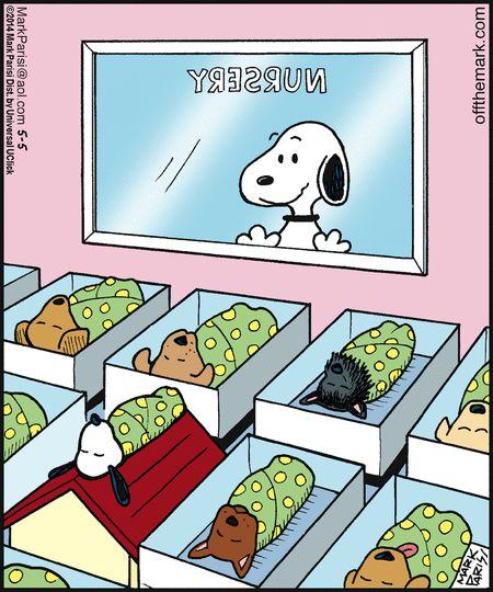Haha so cute! The baby Snoopy is sleeping on a house.