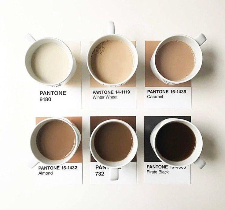 Coffee pantone mood board