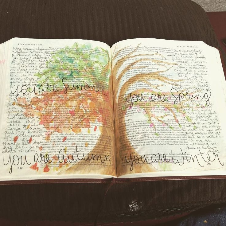 announcing love illustrated bible journaling seven stories