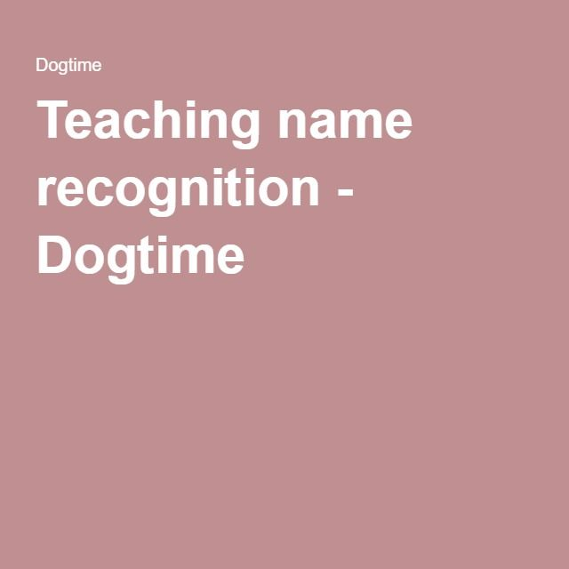 Teaching name recognition - Dogtime