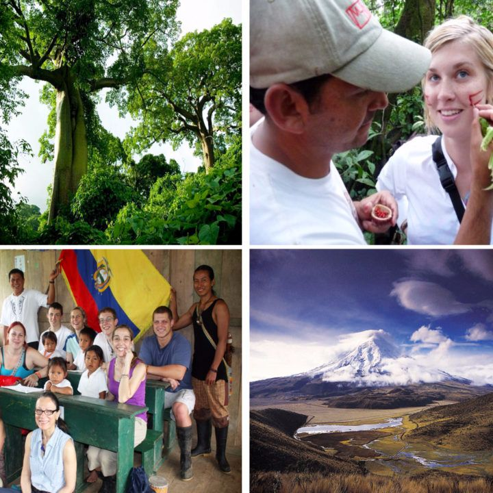 Travel in Ecuador can be about so much more than seeing tourist attractions. It's full of enriching educational opportunities.  In this post, we'll talk about why you should take an educational trip to Ecuador.  Why You Should Take an Educational Trip to Ecuador: 8 Paths to Choose | Latin Roots Travel (Ecuador)