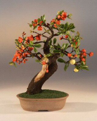 where to buy preserved real life fake artificial bonsai trees for sale uncategorized buy bought bonsai tree