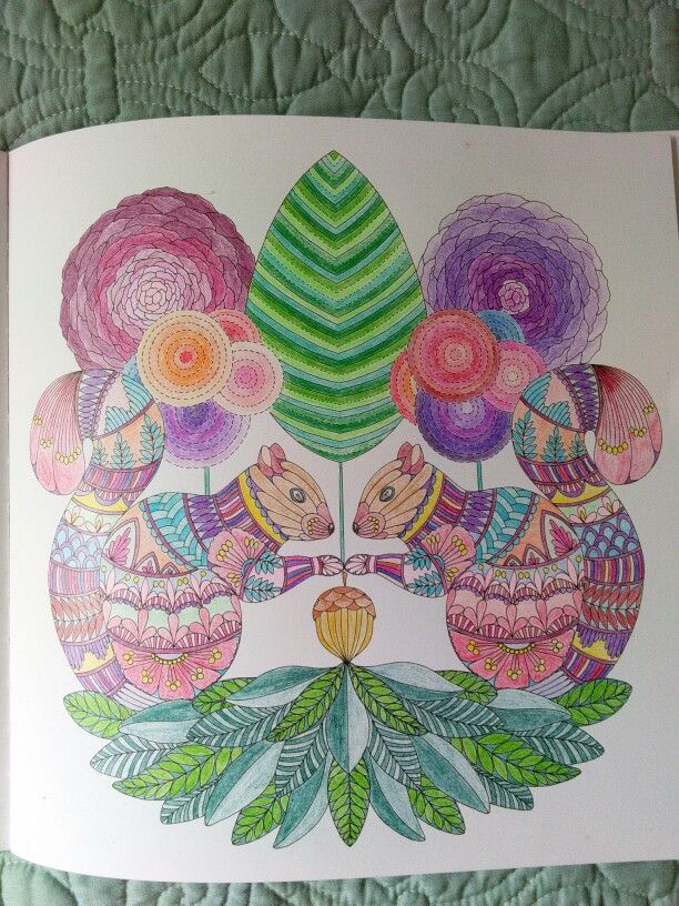 PencilsKM Squirrels Millie Marotta Animal Kingdom Coloring Book