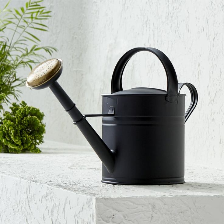 Shop Medium Matte Black Watering Can. A stylish upgrade to the traditional watering can, ours is crafted out of galvanized steel and given a matte black finish and a brass spout.
