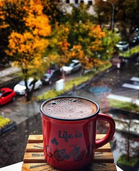 من عرف الاعتدال عرف السعادة ومن سلك التوسط أدرك الفوز ومن اتبع اليسر نال الفلاح يسعد صباحكم Rain And Coffee Coffee Break Coffee Time