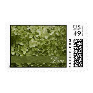 Green Wedding Postage | Zazzle