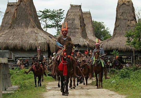 Ceremony to receive important guest in Sumba. Indonesia.