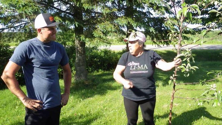 Capsule hebdomadaire 16 des Serres Li-Ma: comment planter un arbre