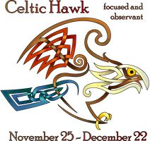 Celtic Hawk by KnotYourWorld