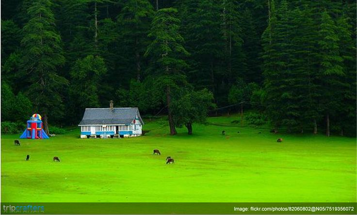 Nestled between the regal peaks of the western Himalayas, few states can match the incredible beauty and physical diversity of Himachal Pradesh. Checkout some great packages for your next trip.  #HimachalPradesh | #India | #Travel