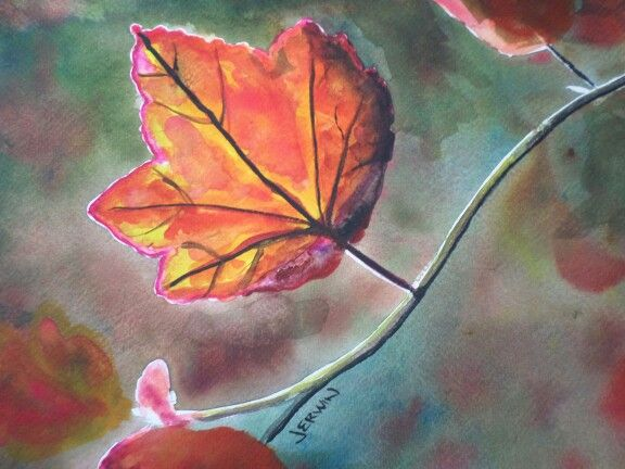 Maple leaf study, watercolor