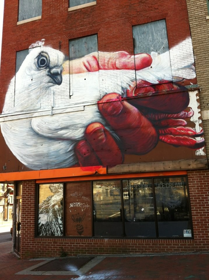 street art by Gaia.  000 dove in the hand.