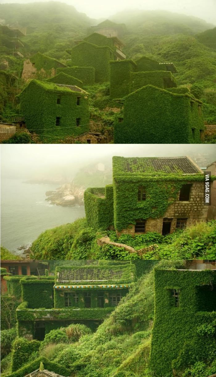 The green village in Zhoushan / China