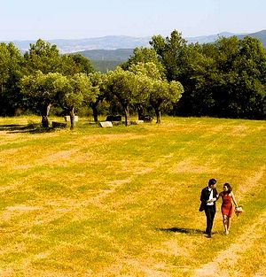 WEDDING IN VALDONICA - TUSCANY: If you wish your ceremony in the romantic church of a Tuscany village, in Valdonica´s Magic Circle, in Valdonica´s medieval Manor House ... we make your dreams happen.