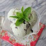 Pure Mint Chip Ice Cream | G-Free Foodie #GlutenFree