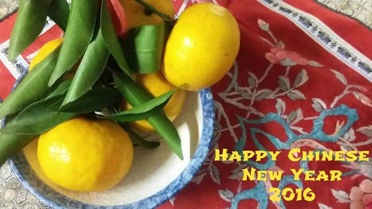Ideas for celebrating Chinese New Year with your family.