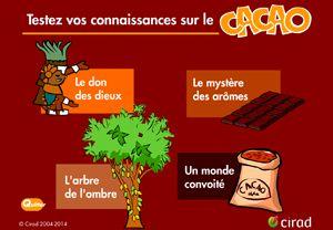 Un QCM du CIRAD pour tester vos connaissances sur le cacao, ses produits dérivés et ses vertus.