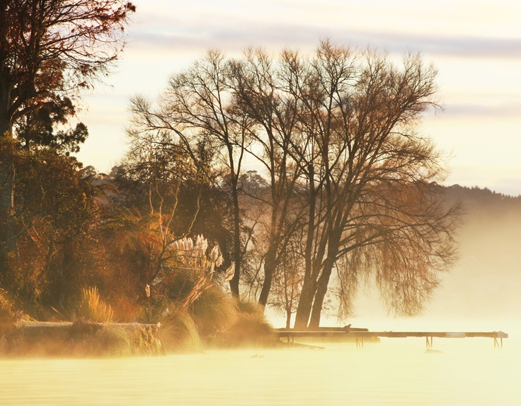 Out of the Mist by Jossie M.  Copyright Alternative Infinity | Jossie Photography