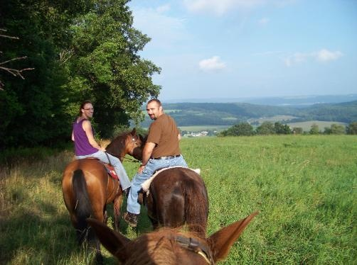 trail rides: Simple Life, Mule Vacations, Favorite Things, Favorite Places, Zoom Zoom, Roc Adventure, Trail Riding, Trail Rides