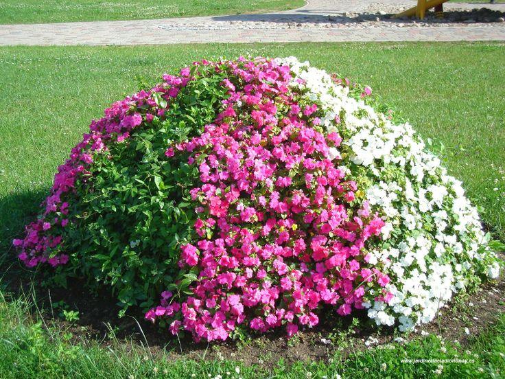 Jardineria eladio nonay ideas divertidas y bellas para - Macetas de exterior ...