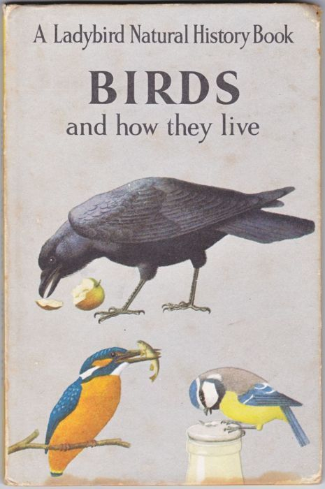 Love this book, the pictures are beautiful as they are in a lot of the nature themed ladybird books.