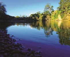 Tōku Awa Koiora –This context investigates the restoration of the lower half of the Waikato River. Kaitiaki are working to restore and protect the health and wellbeing of the river.