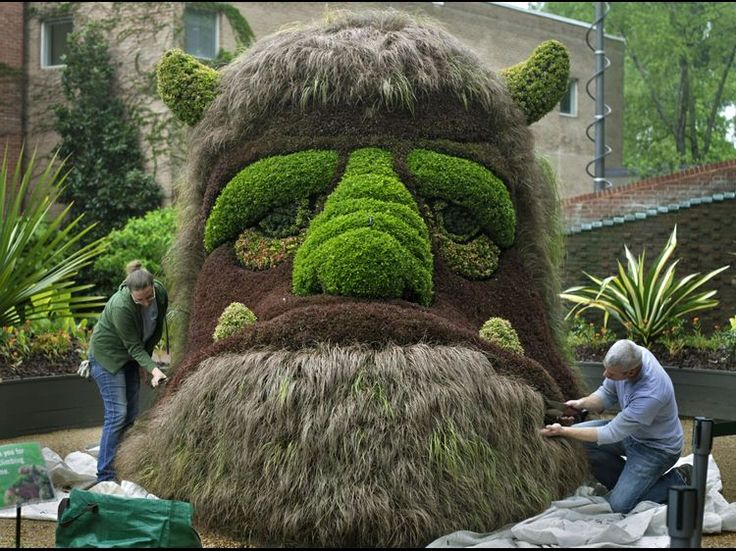 7 best Atlanta Botanical Gardens images on Pinterest | Botanical ...