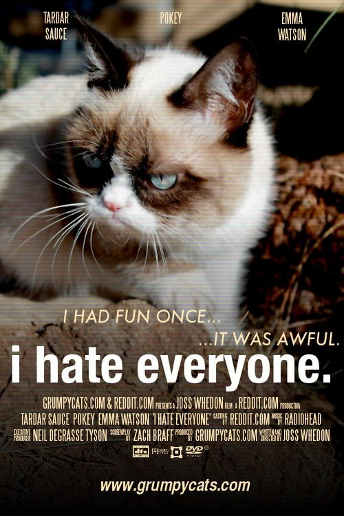 604 Best Images About Grumpy Cat On Pinterest | Cats ...