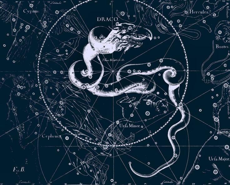 созвездия вектор - Поиск в Google