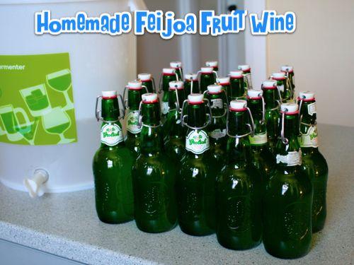 Homemade Feijoa Fruit Wine