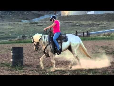 Shoulder and Rib Lift Exercise   Barrel Racing Tips