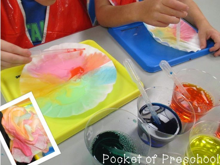 coffee filter flowers preschool 122 best images about color theme on 984