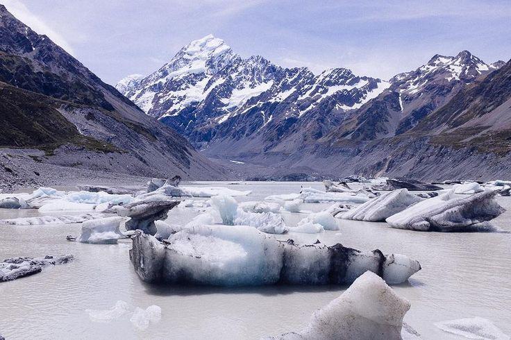 Glacier encounter at Hooker Lake